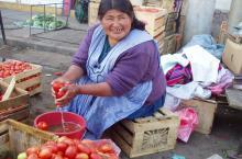 Cholita lavando tomates