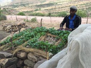 Key Hole Gardening in Lesotho